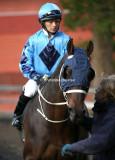Horse Racing 2009