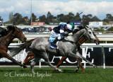 Caulfield racecourse, Melbourne 2010-10-09 (Guineas Day)