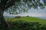 Hilltop shade