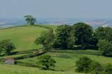 Raddon hill #3