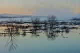 Misty morning near Water Row