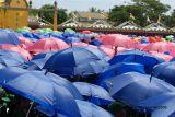 Umbrellas of many colors