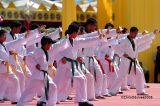 Martial Arts .... II
