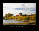 Autumn at Aalholm Castle #3
