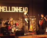 Mellonhead 03551_filtered copy.jpg