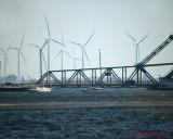 Wind Turbines 06060 copy.jpg