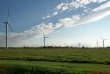 Wind Turbines 03858 copy.jpg