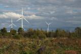 Wind Turbines 03866 copy.jpg