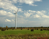 Wind Turbines 03882 copy.jpg