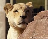 Zoo 09649.JPG