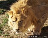 Zoo 09657.JPG