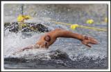 FRAN CRIPPEN , USA  -  LE GAGNANT  /  WINNER 2009
