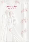 2009 - Adam & Jiaqi's Wedding
