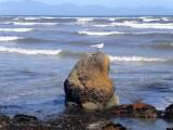 woman sitting in the sea