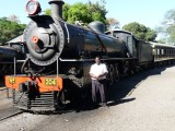 David and his train