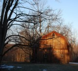 Barn In Early Morning Sun