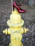 Red Shoe On Hydrant