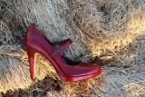Red Shoe In Hay