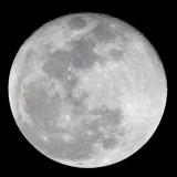 moon-1755