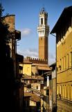 Siena 27