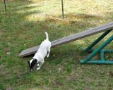 Exiting the Teeter Totter