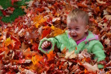The true meaning of fall in New England