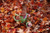 The true meaning of fall in New England II