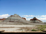 Petrified Forest and Painted Desert in Arizona