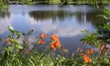 Cowling Arboretum