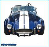 The Legendary Shelby Cobra