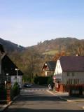 Village green ...