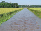 9 June 2008 Flood of Elnora Area Day 1