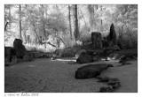 Morikami Gardens #4