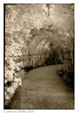 Morikami Arch