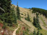 Olympic N.P. - Gray Wolf Ridge