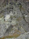 Notch Rocks