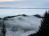 Fog and Strait of Juan de Fuca