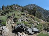 Trail Towards Summit