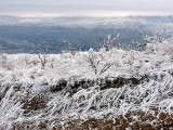 Frost and Mission Ridge Area