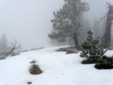 Ridge and Fog
