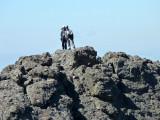 Crestone Climbers