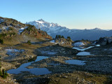 Tarns and Mount Shuksan