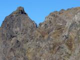 Tomyhoi Summit Area