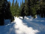 Plowed Track