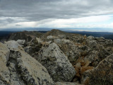 Medicine Bow Summit Views