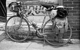 Alcyon-Bikecentennialbike