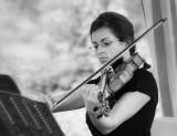 The Violinist 3