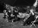 River City String Quartet