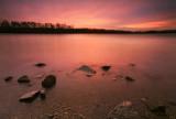 The pink sunrise
