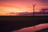 Windmills & sunset